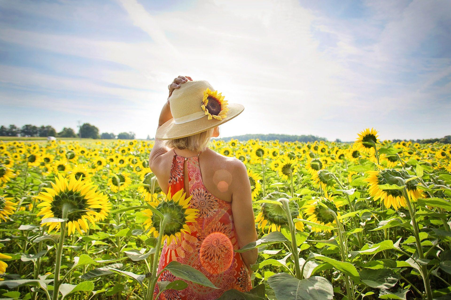 estate a Todi - giugno- luglio - maggio - inizio estate a Todi - primavera a Todi