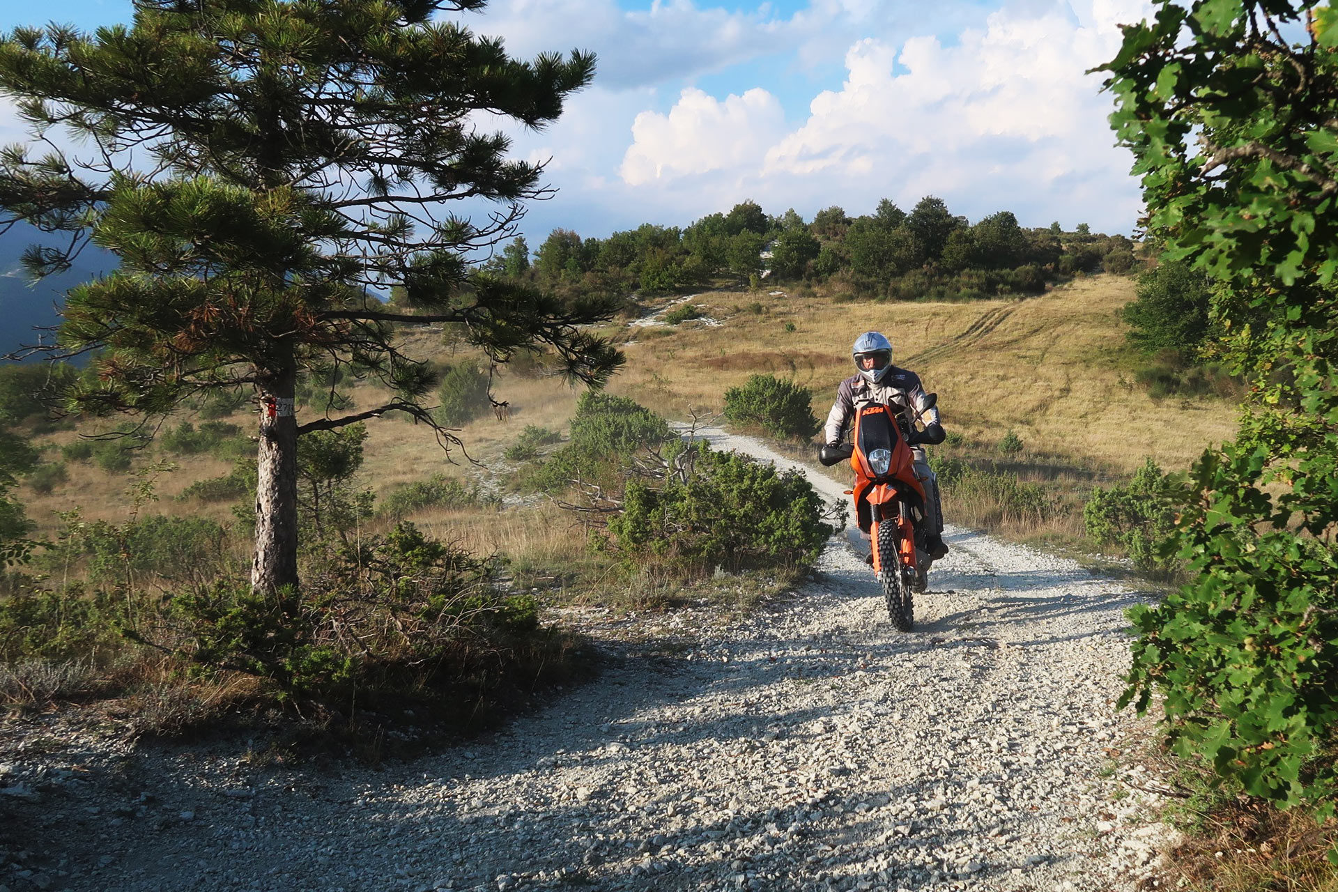 queen trophy moto umbria 2019