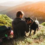 trekking in umbria con cane